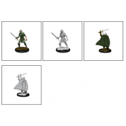 Pathfinder Battles Deep Cuts Unpainted Miniatures - Elf Fighter Male (6 Units)