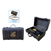 Pyramid Premium Gift Set - Harry Potter (Trouble Finds Me)