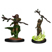 D&D Nolzur's Marvelous Miniatures: Human Druid Female (6 Units)