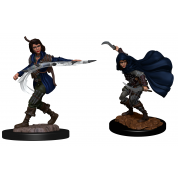 Pathfinder Deepcuts: Human Rogue Female (2 Units)