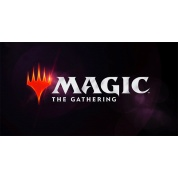 MTG - Modern Horizons 2 Collector's booster Display (12 Packs) - DE