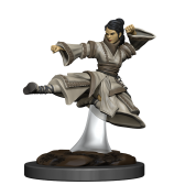 D&D Icons of the Realms Premium Figures: Human Monk Female (6 Units)