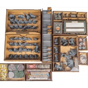 e-Raptor Insert The Lord of the Rings: Journeys in Middle-earth with all expansions