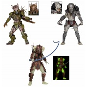 Predators Series 16 Deluxe Action Figure 20cm Assortment (14)